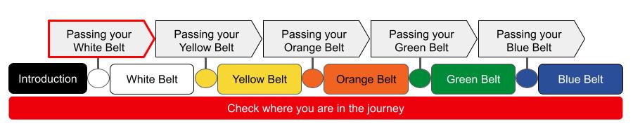 Passing white belt